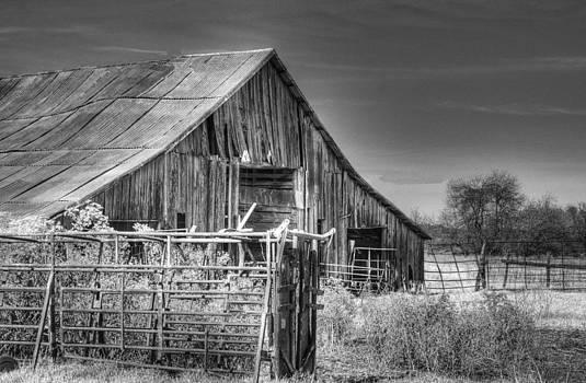 Lisa Moore - Bluff Barn