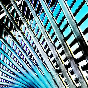Nancy Stein - Blurred Lines
