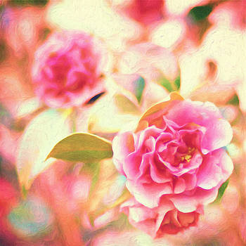 Blush Strokes by Joel Olives