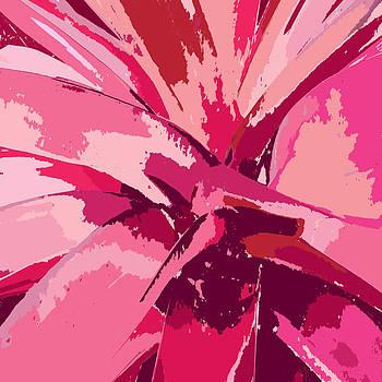 Blushing Bromeliad by Rosie Brown