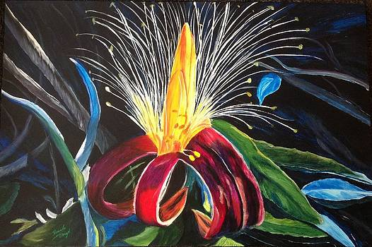 Boab Flower by Renate Voigt