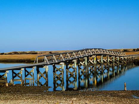 Boardwalk Bridge by Heather Sylvia