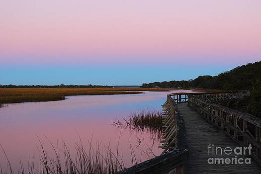 Boardwalk Over Marsh II by Andre Turner