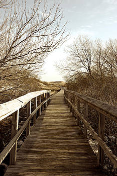 Boardwalk Plum Island by Gail Maloney