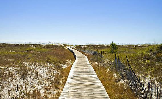 Boardwalk by Susan Leggett