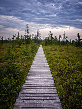Boardwalk to Nowhere by Philip G