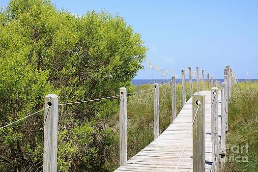Danielle Groenen - Boardwalk to the Beach