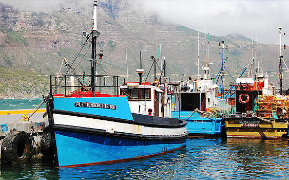 Boat in Hout Bay  by James  Wasdell