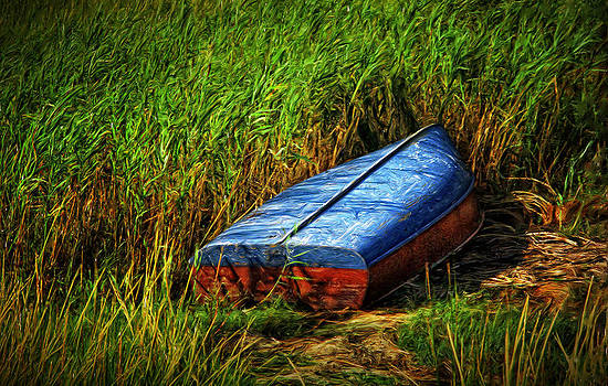 Boat in the Grass by Carl Cox