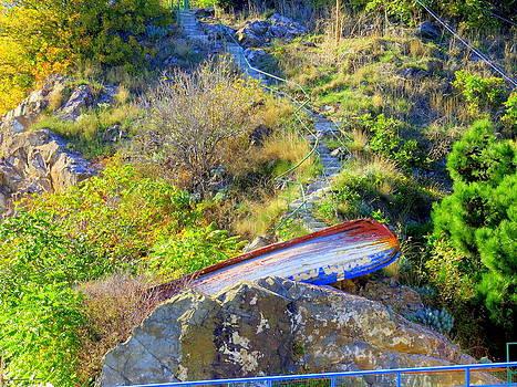 Rick Todaro - Boat On The Rocks