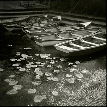 Boats and Waterlilies by Joseph-Philippe Bevillard
