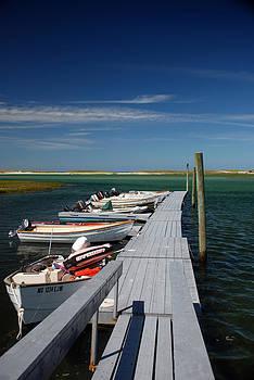 Mark Wiley - Boats at Bass Hole