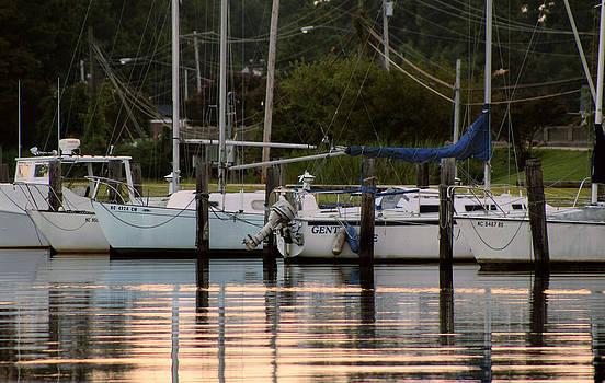 Boats at the Marina by Carolyn Ricks