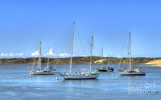 Boats on the Bay by Mathias