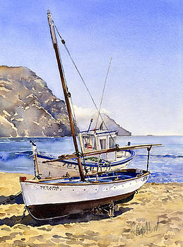 Boats on the beach at Las Negras by Margaret Merry