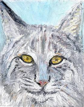 Sandra Lytch - Bobcat
