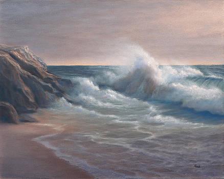 Bodega Bay by Steve Kohr