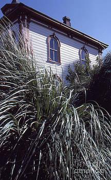Bodega School House by David Pettit