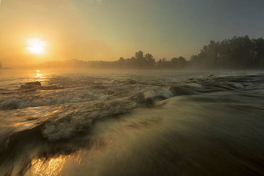 Golden river by Davorin Mance