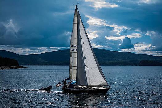 Bold Blue Sailboat by Jason Brow