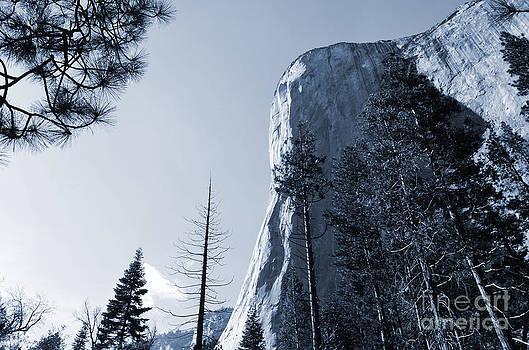 Bold El Capitan Yosemite by Greg Cross