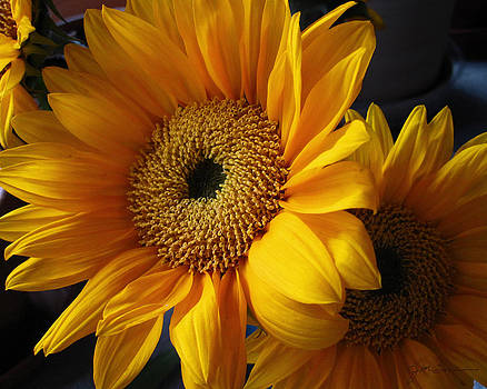 Julie Magers Soulen - Bold Golden Yellow and Orange Sunflower Bouquet