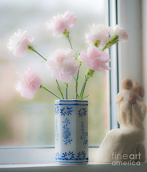 Bold n Soft Pink n Blue by Donald Davis