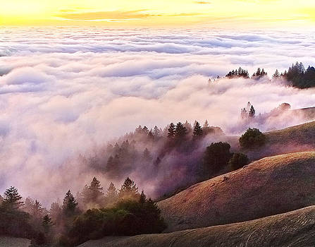 Bolinas Ridge 3 by Michael Fahey