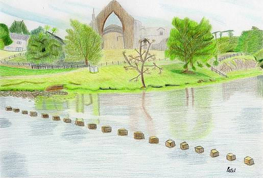 Bolton Abbey by Bav Patel