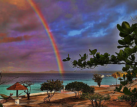 Photos By  Cassandra - Bonaire After the Storm