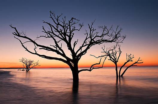 Bone Yard at Dawn by JHR photo ART