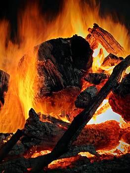 Bonfire  by Chris Berry