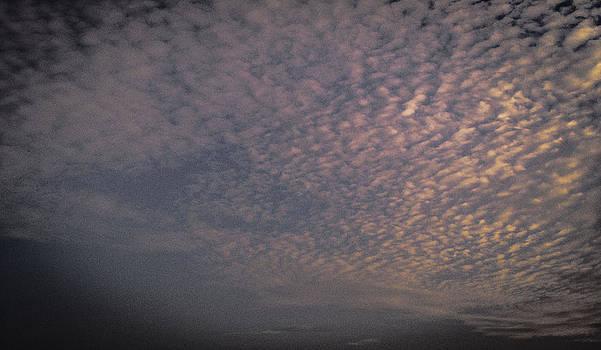 Bonita Beach Sunset Sky by Bradley R Youngberg