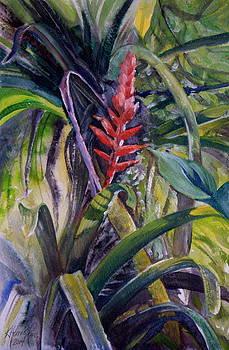 Bonita's Bromelia by Kitty Harvill