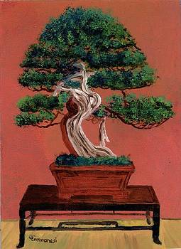Bonsai tree by Gianluca Cremonesi