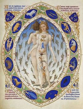 Book of Hours - Anatomical Man by Little Vintage Chest