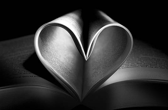 Book of Love by Kenneth Forland