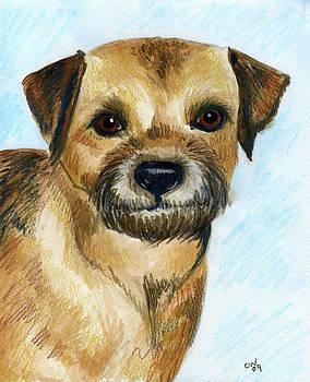 Border Terrier by Christine Winship