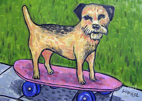 Border Terrier Skateboarding by Jay  Schmetz