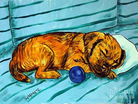 Border Terrier Sleeping by Jay  Schmetz
