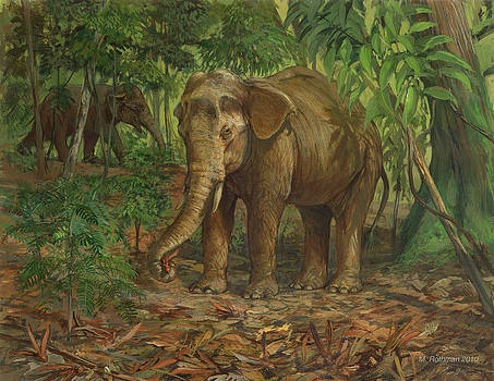 Borneo Pygmy Elephant by ACE Coinage painting by Michael Rothman