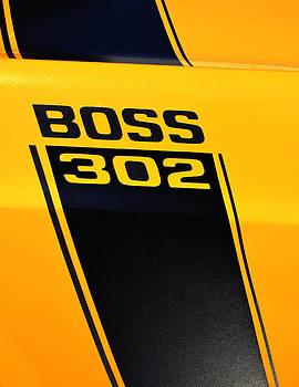 Paul Mashburn - Boss Mustang Stripe