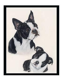 Boston And Pup by Ellen Lyner