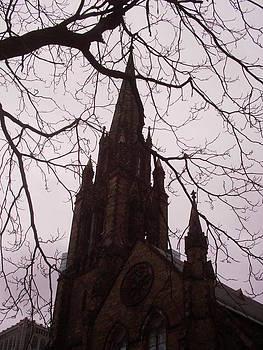Boston Church by David S Reynolds