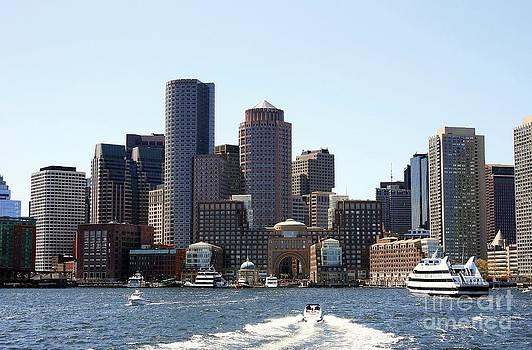 Boston Skyline by David Gardener
