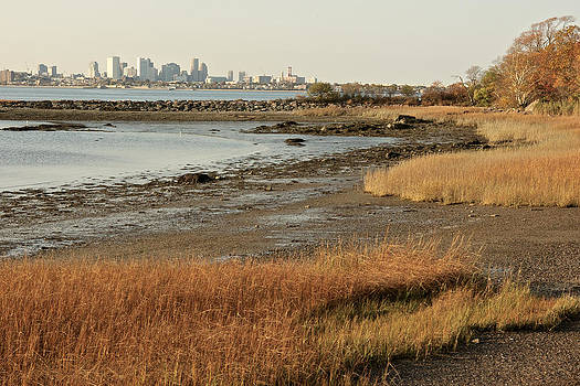 Boston Skyline from Squantum by Gail Maloney