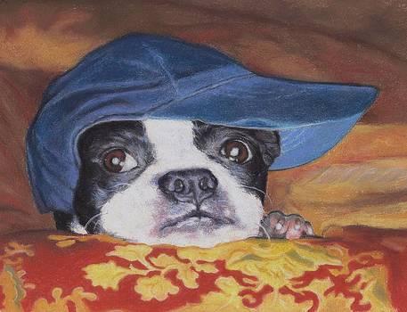 Boston Terrier in a Ball Cap by Pamela Humbargar