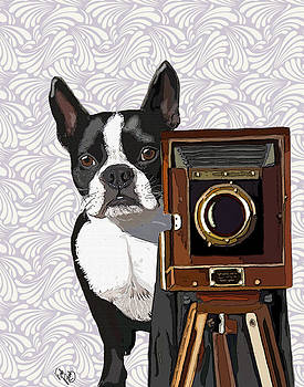 Boston Terrier Photographer Look Doggie by Kelly McLaughlan
