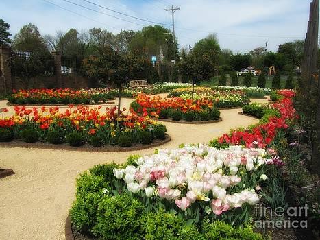 Jaclyn Hughes Fine Art - Botanical Beauties