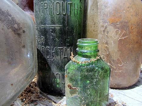 Susan Carella - Bottle Hunt - Glass Treasures